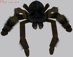 spidershot2b.jpg